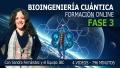 FASE 3 - Formación Bioingeniería Cuántica - Programa SEO con Sandra Fernández y Equipo IBC