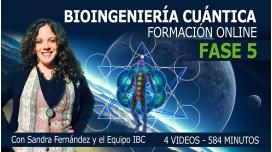 FASE 5 - Formación Bioingeniería Cuántica - Programa SEO con Sandra Fernández y Equipo IB5