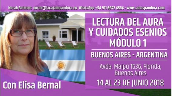 Del 14 al 23 de Junio 2018 ( Argentina ) - RESERVA - FORMACIÓN: Lectura del Aura y Cuidados Esenios - MÓDULO 1 con Elisa bernal