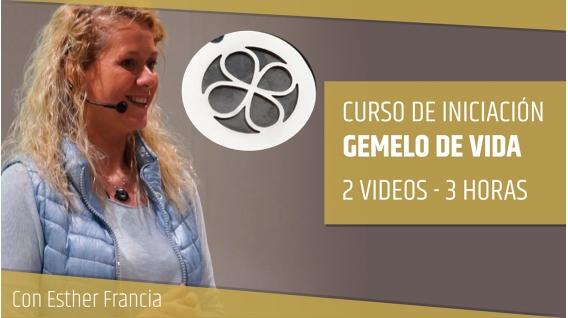 CURSO DE INICIACIÓN - GEMELO DE VIDA,