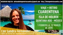 Del 1 Febrero al 12 marzo 2019 - VIAJE Y RETIRO CUARENTENA - Isla de Holbox ( Quintana Roo, México )