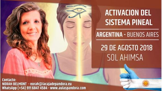 29 Agosto 2018 ( Buenos Aires, Argentina ) - RESERVA - Taller Activación del Sistema Pineal - Sol Ahimsa