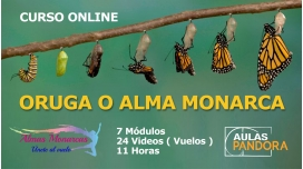 ORUGA O ALMA MONARCA - Curso Online para Levantar el vuelo y dejar la vida de oruga