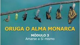ORUGA O ALMA MONARCA - MÓDULO 3 - Amarse a si Mismo