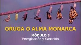 ORUGA O ALMA MONARCA - MÓDULO 5 - Energización y Sanación