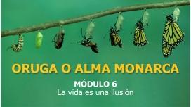 ORUGA O ALMA MONARCA - MÓDULO 6 - La Vida es una ilusión