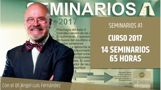 Pack Seminarios A1 curso 2016 - Dr. Ángel Luís Fernández