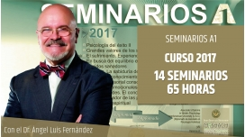 Pack Seminarios A1 curso 2017 - Dr. Ángel Luís Fernández