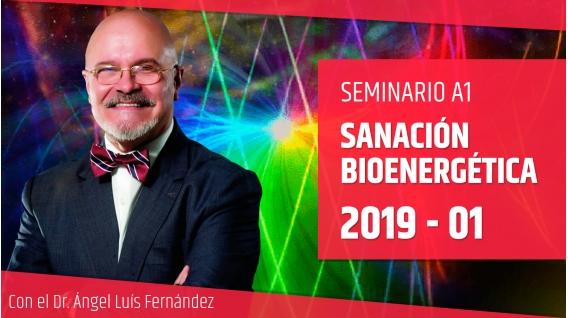 13 Enero 2019 - Seminario A1: SANACIÓN BIOENERGÉTICA con el Dr. Ángel Luís Fernández