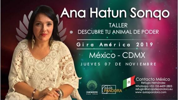 7 Noviembre 2019 ( CDMX - México ) - RESERVA - Taller Descubre tu animal de Poder - ANA HATUN SONQO