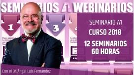Pack Seminarios A1 curso 2018 - Dr. Ángel Luís Fernández
