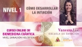 CURSO ONLINE BIOMEDICINA CUÁNTICA, N1: Cómo desarrollar la intuición - Vanessa Liso