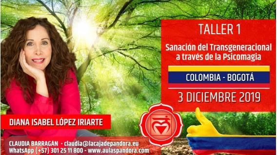 12 Marzo 2019 ( Colombia, Bogotá ) - RESERVA - TALLER 1 PRIMER CHACRA Curso de Diana López Iriarte
