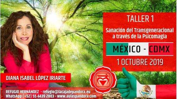 1 Octubre 2019 ( México, CDMX ) - RESERVA - TALLER 1 PRIMER CHACRA Curso de Diana López Iriarte