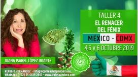 6 Octubre 2019 ( México, CDMX ) - RESERVA - TALLER 7  SEXTO Y SÉPTIMO CHACRA Curso de Diana López Iriarte