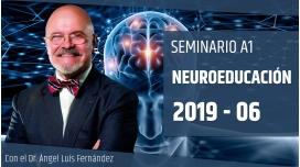 6 ( 2019 ) - Seminario A1: NEUROEDUCACIÓN con el Dr. Ángel Luís Fernández