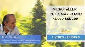 9 de Junio 2019 (en Directo) MICROTALLER LA GRAN EFICACIA DE LA MEDICINA AYURVÉDICA CON JESÚS BOJ