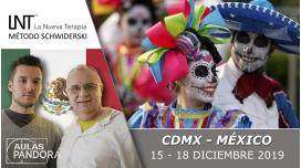 15 - 18 Diciembre 2019 ( CDMX - México ) - FORMACIONES LA NUEVA TERAPIA LNT®, Método Schwiderski