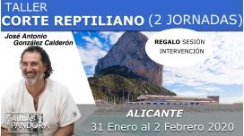 31 Enero al 2 Febrero 2020 ( Alicante, España ) - TALLER CORTE REPTILIANO ( 2 Jornadas ) con José Antonio González Calderón