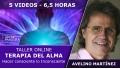 19 y 20 Octubre 2019 ( Online En Directo ) - Taller: TERAPIA DEL ALMA, Hacer consciente lo inconsciente - Avelino Martínez