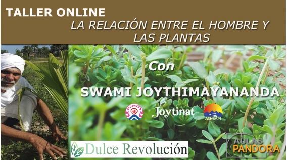 (Sábado 2 Noviembre 2019) TALLER ONLINE LA RELACIÓN ENTRE EL HOMBRE Y  LAS PLANTAS