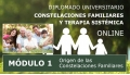 DIPLOMADO UNIVERSITARIO ONLINE DE CONSTELACIONES FAMILIARES - Módulo 1 ( El Origen de las constelaciones familiares )