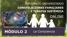 DIPLOMADO UNIVERSITARIO ONLINE DE CONSTELACIONES FAMILIARES - Módulo 2 ( La consciencia )