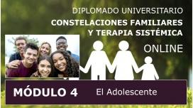 DIPLOMADO UNIVERSITARIO ONLINE DE CONSTELACIONES FAMILIARES - Módulo 4 ( El Adolescente )