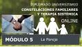 DIPLOMADO UNIVERSITARIO ONLINE DE CONSTELACIONES FAMILIARES - Módulo 5 ( La pareja )