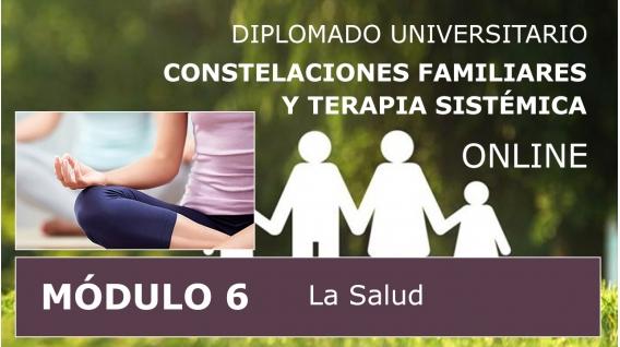 DIPLOMADO UNIVERSITARIO ONLINE DE CONSTELACIONES FAMILIARES - Módulo 6 ( La Salud )