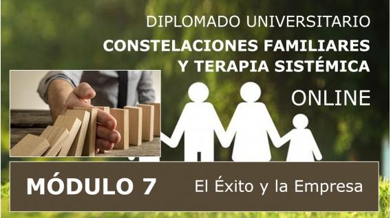 DIPLOMADO UNIVERSITARIO ONLINE DE CONSTELACIONES FAMILIARES - Módulo 7 ( El Éxito y la Empresa )