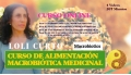 Curso de Alimentación Macrobiótica Medicinal - Loli Curto