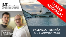6 al 9 Agosto 2020 ( Valencia - España ) - FORMACIONES LA NUEVA TERAPIA LNT®, Método Schwiderski