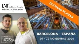 26 al 29 Noviembre 2020 ( Barcelona ) - FORMACIONES LA NUEVA TERAPIA LNT®, Método Schwiderski