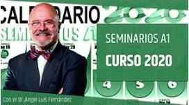 Pack Seminarios A1 curso 2020 - Dr. Ángel Luís Fernández