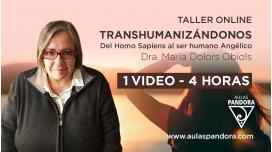 Taller online: TRANSHUMANIZÁNDONOS - Dra. María Dolors Obiols