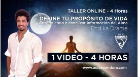 Taller online: DEFINE Y CONECTA TU PROPÓSITO DE VIDA - Endika Drame