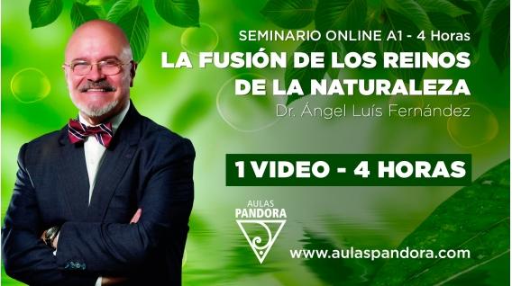 ( 07 - 2021 )  Seminario online A1: LA FUSIÓN DE LOS REINOS DE LA NATURALEZA con el Dr. Ángel Luís Fernández