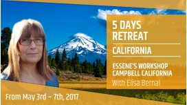 From May 3rd to 7th 2017 Elisa Bernal Essene s workshop Campbell California