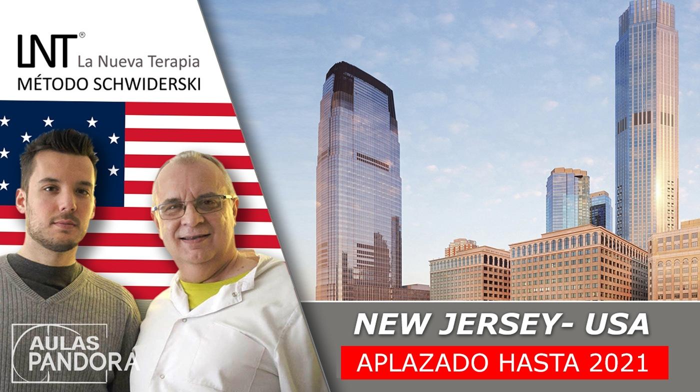 20-al-23-agosto-2020-new-jersey-eeuu-formaciones-la-nueva-terapia-lnt-metodo-schwiderski.html