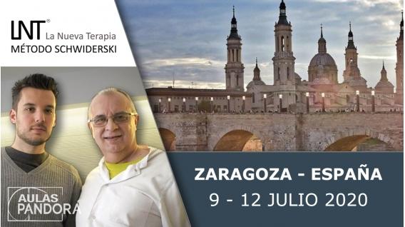 9-al-12-julio-2020-zaragoza-espana-formaciones-la-nueva-terapia-lnt-metodo-schwiderski.html